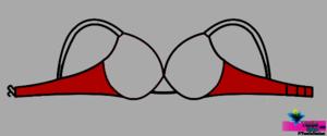 Wings-TextileStudent.com